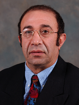 Speaker: Siamack Shirazi, ECRC (Univ of Tulsa)